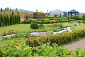 Питомник растений Южный